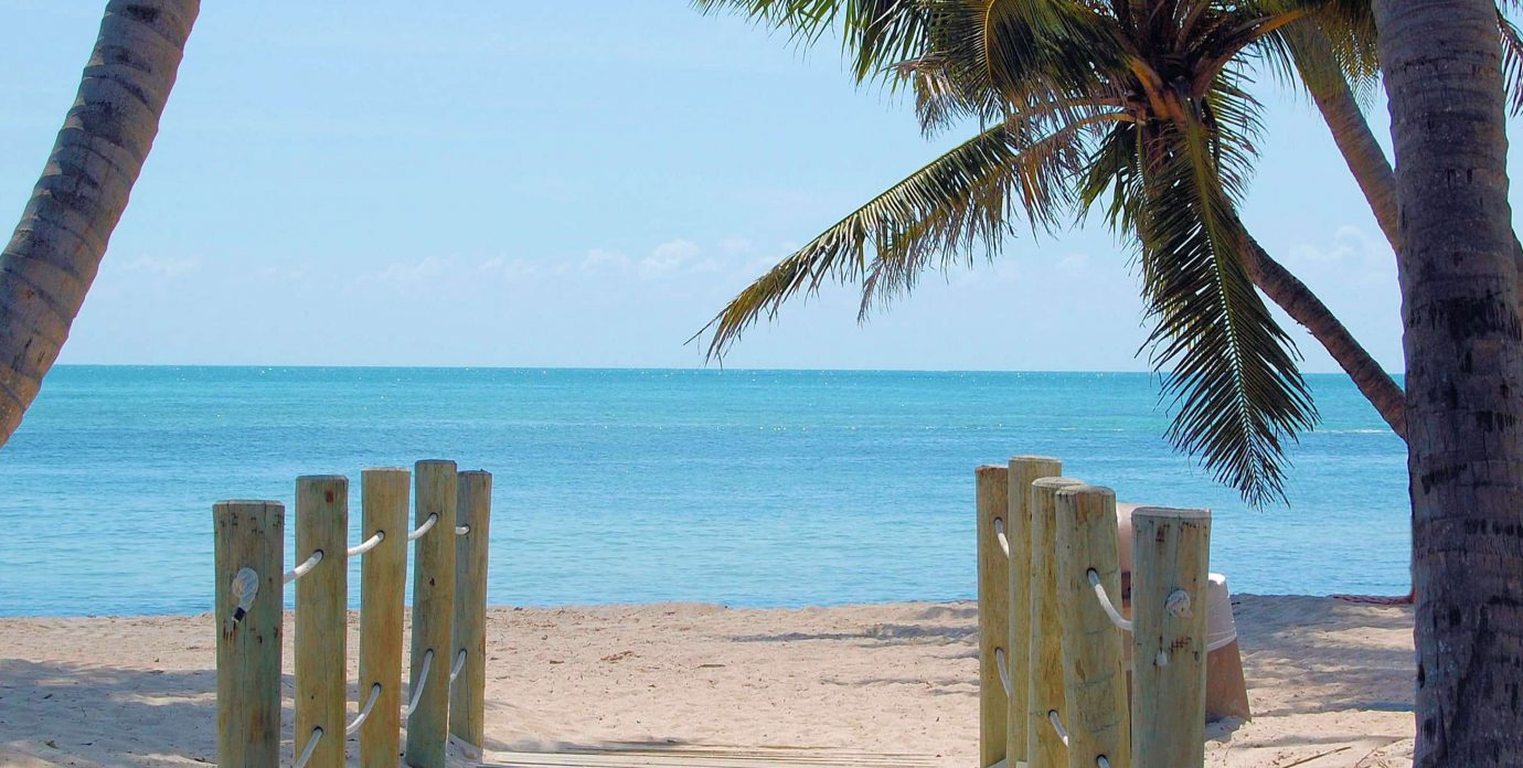 Key West Beach with palm trees
